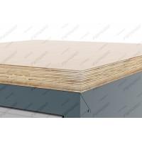 Ferrum 11.9923 Столешница Premium из влагостойкой шлифованной фанеры с лаковым покрытием, 1310